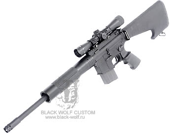 Diemaco 5.56mm C8CT (custom Tactical)